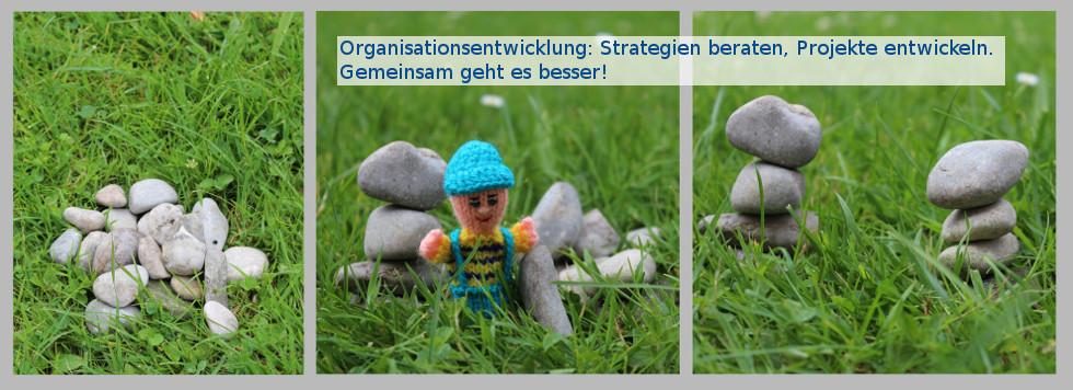 Organisationsentwicklung: Strategien beraten, Projekte entwickeln. Gemeinsam geht es besser!